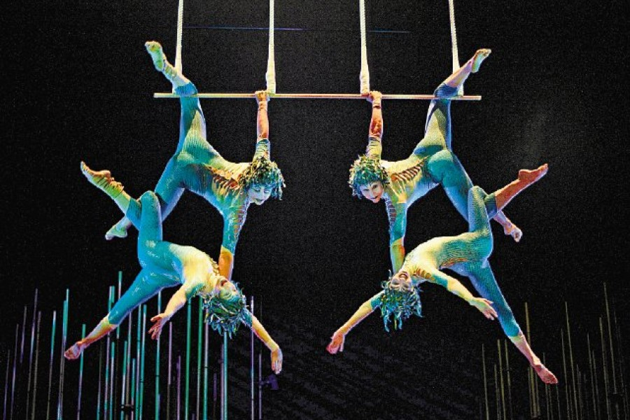 Gran circo wonderland en zaragoza - Jefatura trafico zaragoza ...